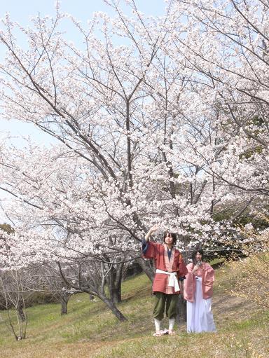 4大高緑地公園の桜