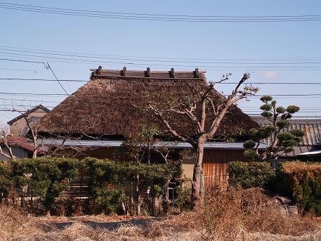茅葺の建物1