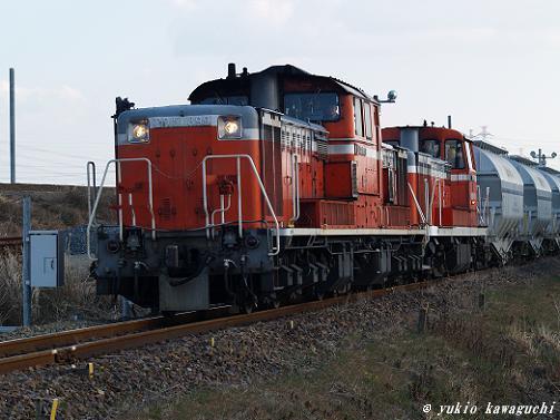 P1010637C.JPG